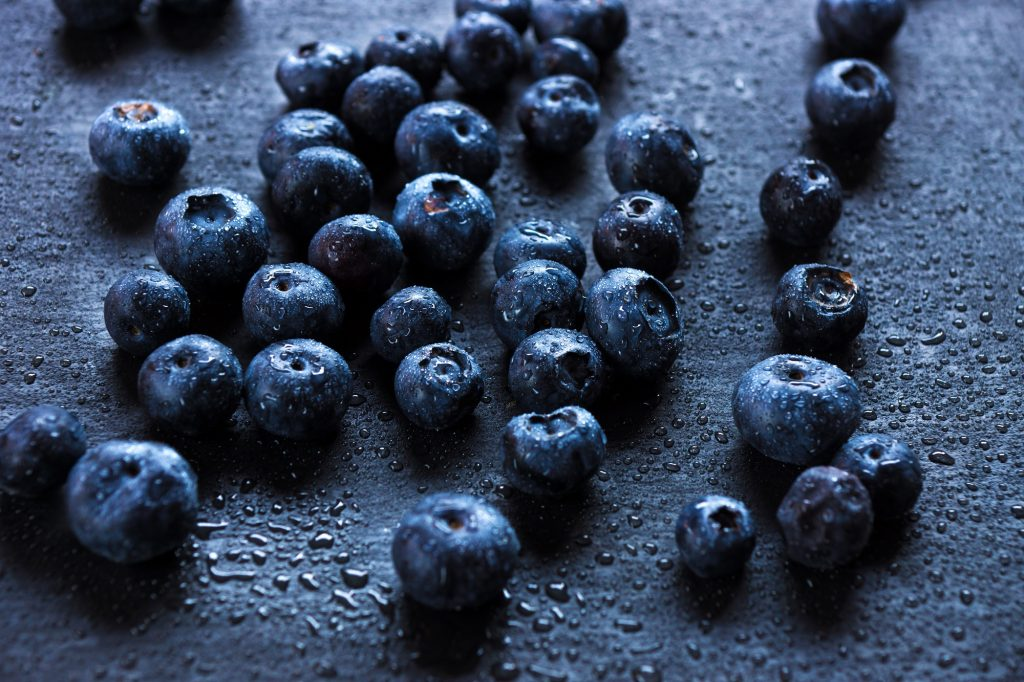 International blueberry coalition formed to oppose U.S. import limitations