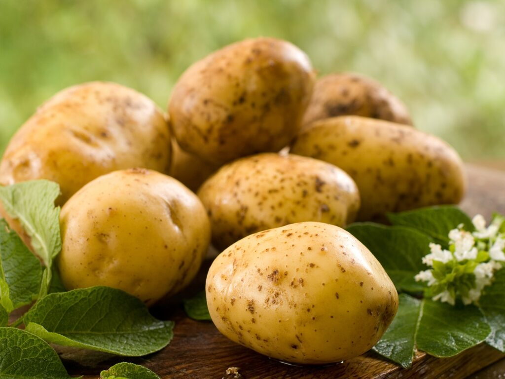 Boosted by lockdowns, U.S. potato sales hit record in 2020