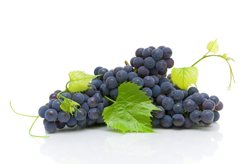 U.S. shoppers buying more grapes - survey