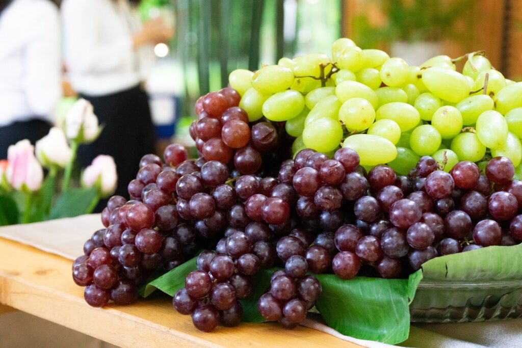 South Africa's Hex River expecting weeks of large grape volumes