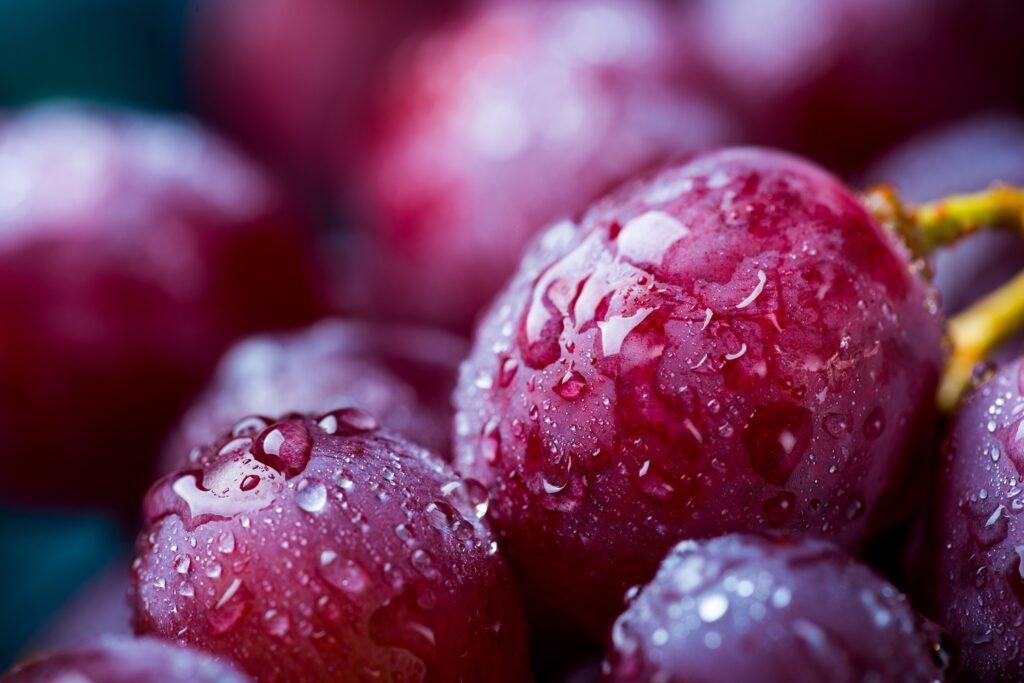 Chilean grape forecast down a quarter while Peruvian shipments well ahead of last season - Vanguard