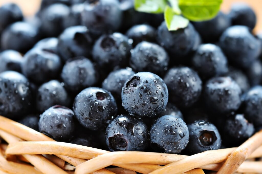 Agronometrics in Charts: USITC rules imported blueberries do not seriously injure U.S. industry