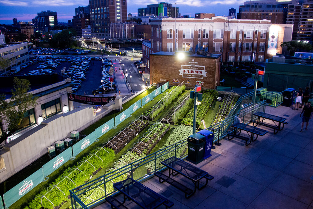 Tanimura & Antle acquires Boston-based Green City Growers