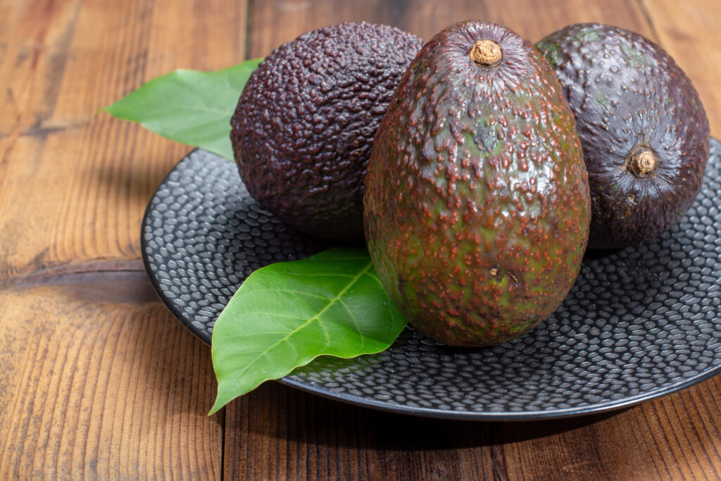 Agronometrics in Charts: Current scenario for Chilean avocados in the U.S.