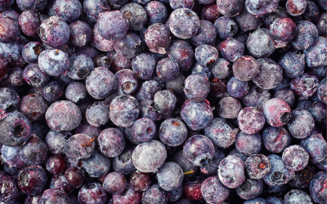 Frozen blueberries with potential for