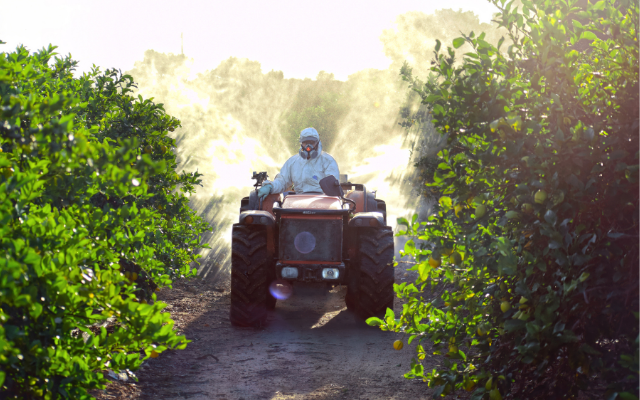 Lawsuit challenges EPA approval of antibiotic as pesticide on citrus crops