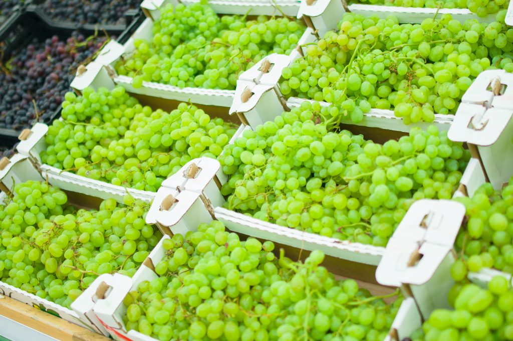 Five lessons from a climatic catastrophe for the table grape industry