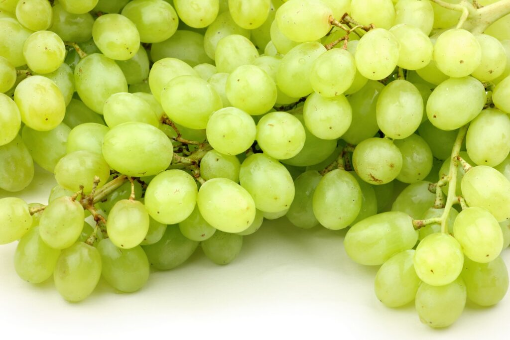 Indian grape exports to Europe down by 18%, but still expected to exceed previous season