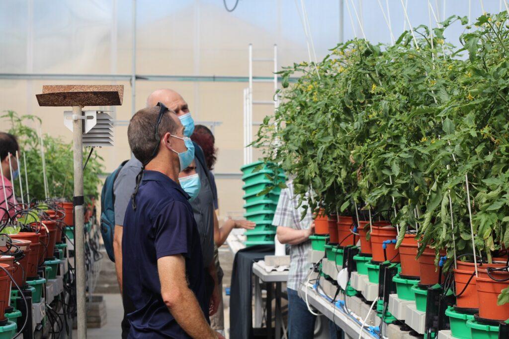 New platform reveals secrets of plants' performance to achieve better crop yields