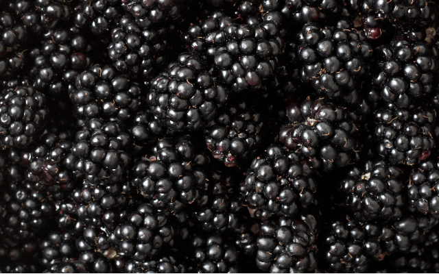 Agronometrics in Charts: Blackberries reach highest prices in five years