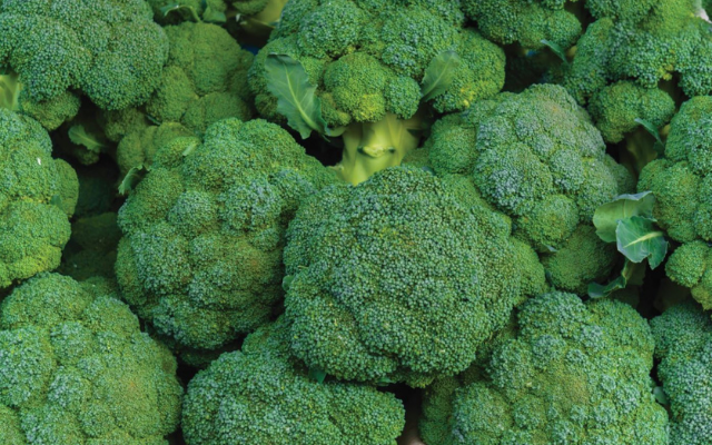 Broccoli growers and retailers can safeguard quality and eliminate ice with SmartFresh