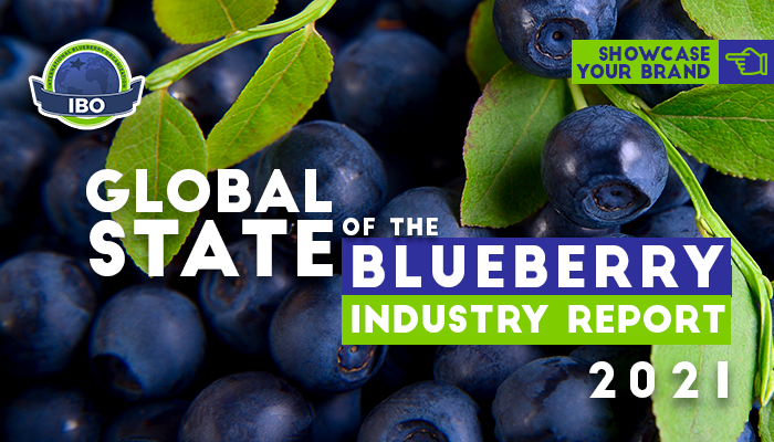 IBO's 2021 State of the Blueberry Industry Report offers advertising opportunities