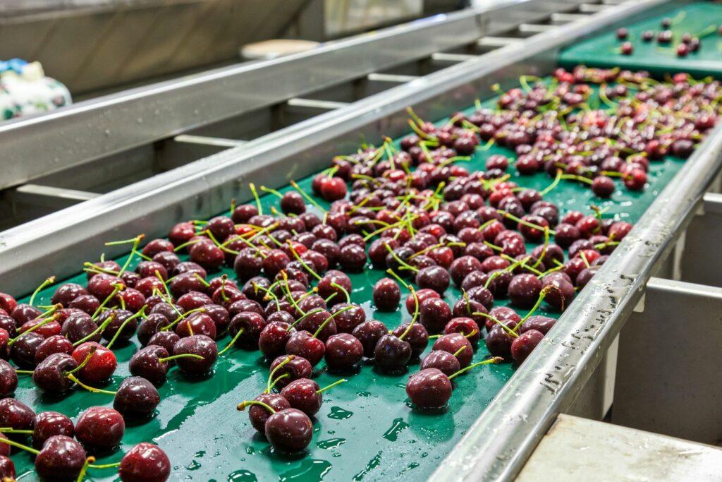 Global Cherry Summit announces webinar that will analyze recent season's challenges