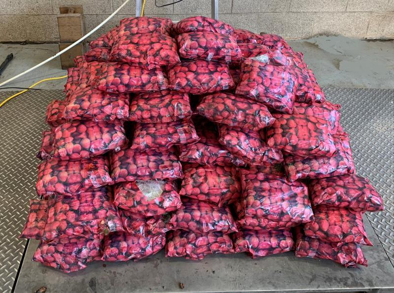U.S. intercepts $8M of meth hidden in strawberries