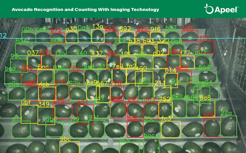 Apeel acquires imaging technology company ImpactVision