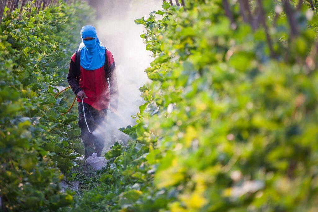 Pesticides harming vital soil organisms, study claims