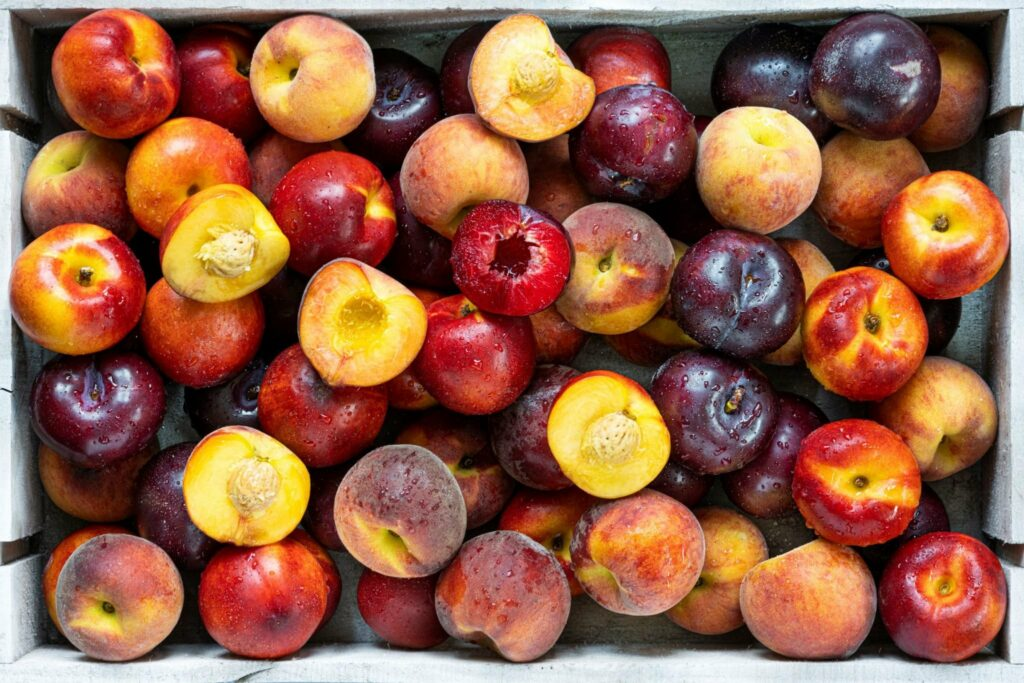 South African stone fruit industry reports record volumes