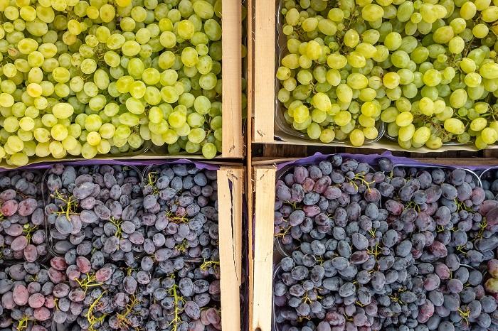 North American table grape market faces