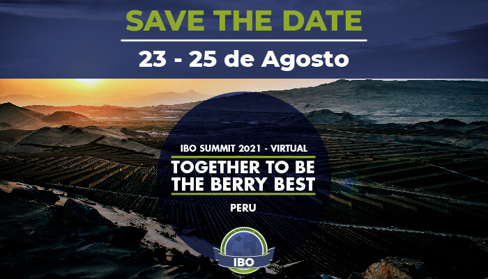 Save the date for the International Blueberry Organization Summit 2021