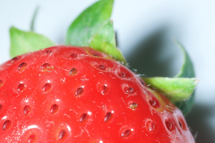 Canada-developed bioactive packaging can keep strawberries fresher for longer