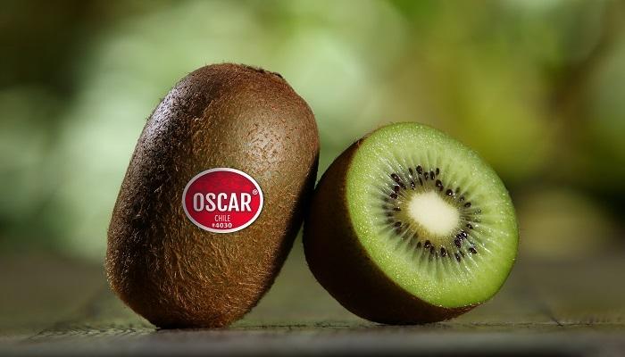 Primland begins marketing Chilean kiwifruit to maintain year-round supply