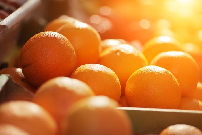 Moroccan citrus export forecast revised downward
