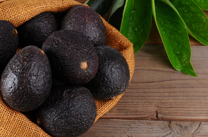 Agronometrics in Charts: Strong Q2 finish for avocado industry reflected in USDA data