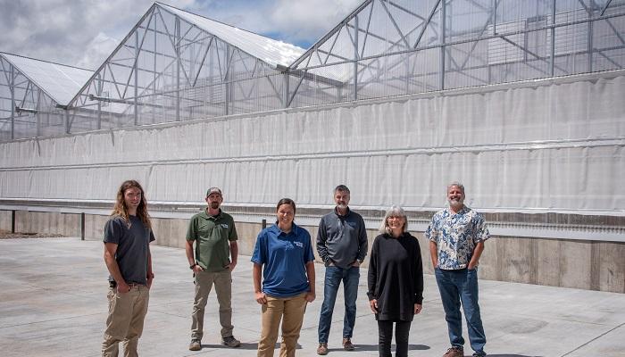 Organic-certified hydroponic greenhouse opens doors in Colorado