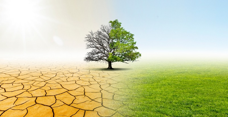Webinar to analyze the future of water and agriculture in Chile