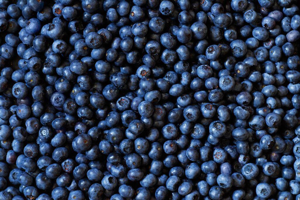 Peru forecasts blueberry exports to grow by a quarter