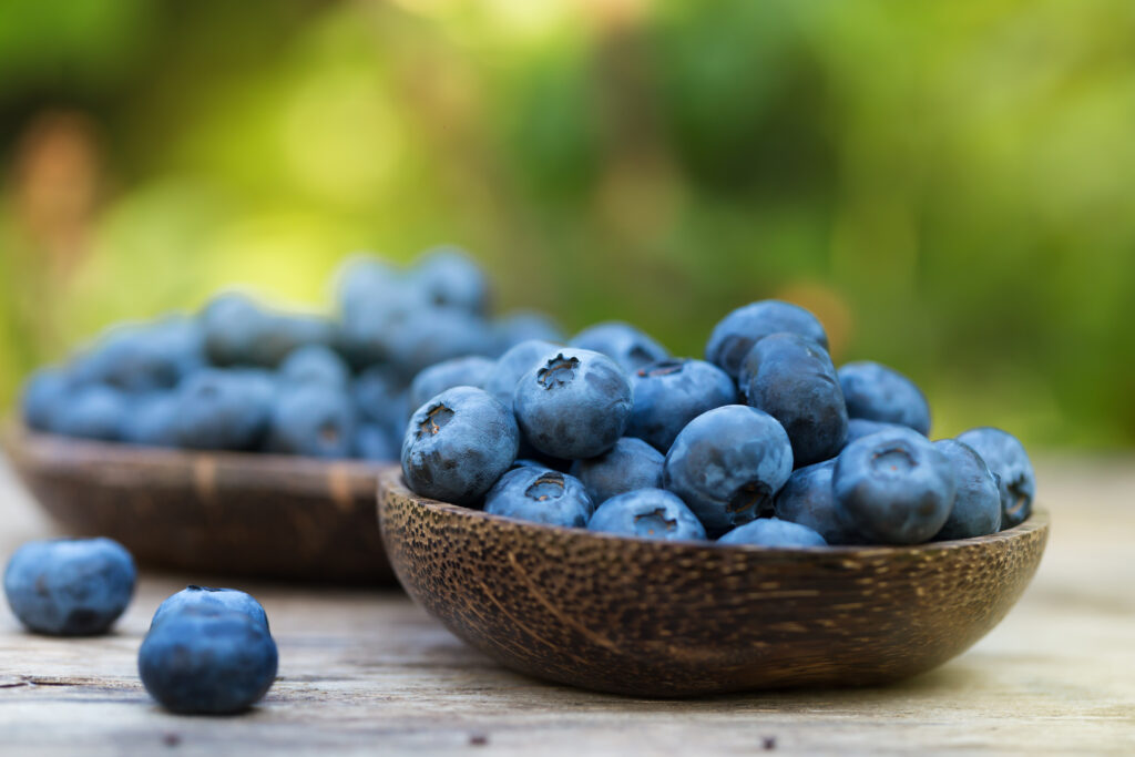 Naturipe celebrates National Blueberry Month, provides season outlook