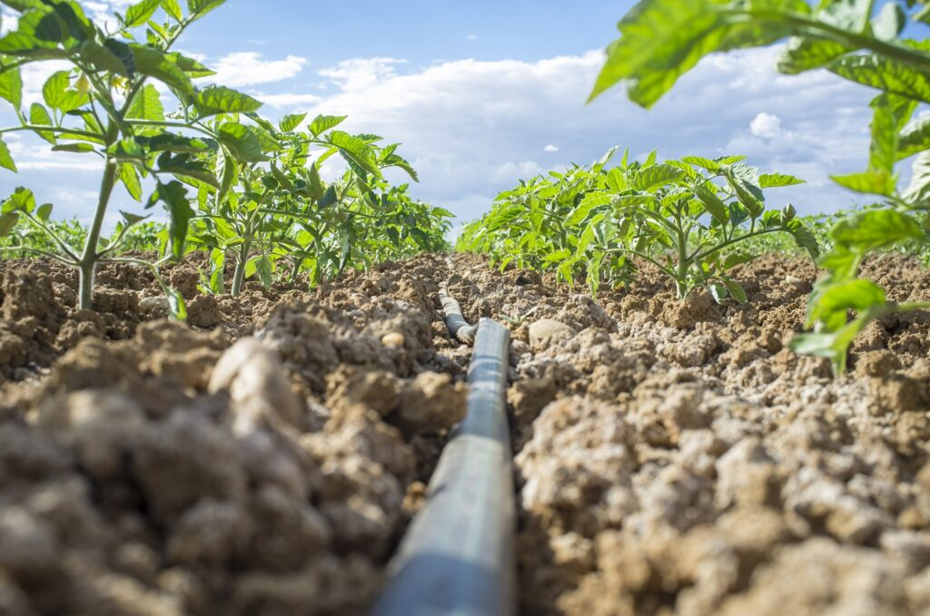 U.S.: California water futures trading will increase price transparency - consultant