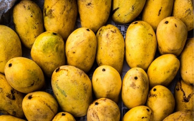 Kenya to resume mango exports to Europe after eight years