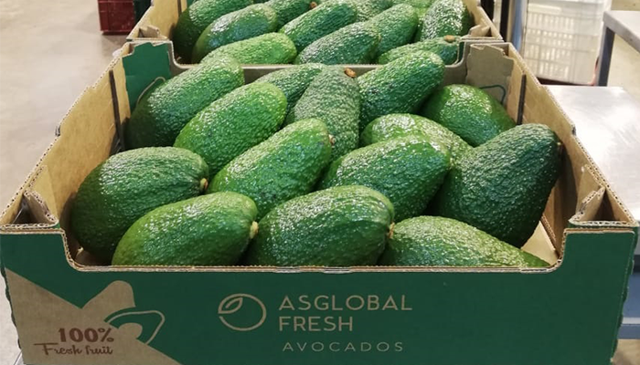 ASGLOBALFRESH, quality fresh fruits throughout the year that break with seasonality