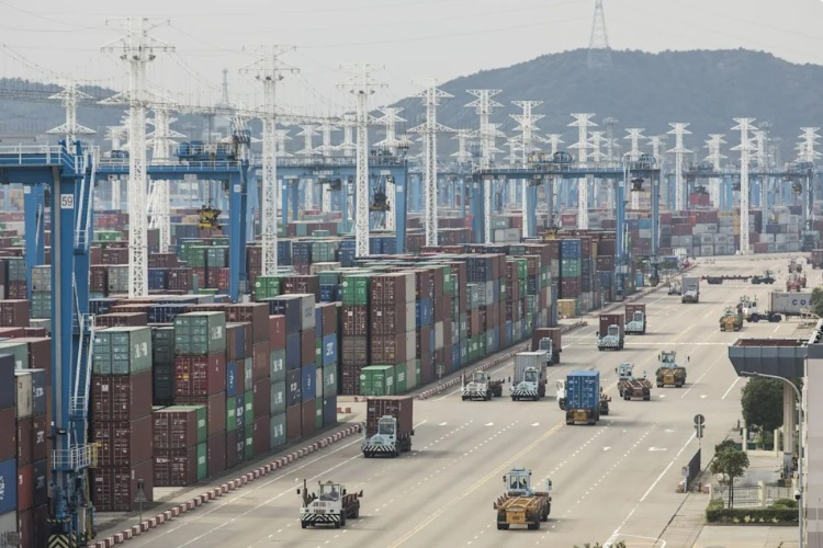 Global trade at risk as China partially shuts world's third-largest container port