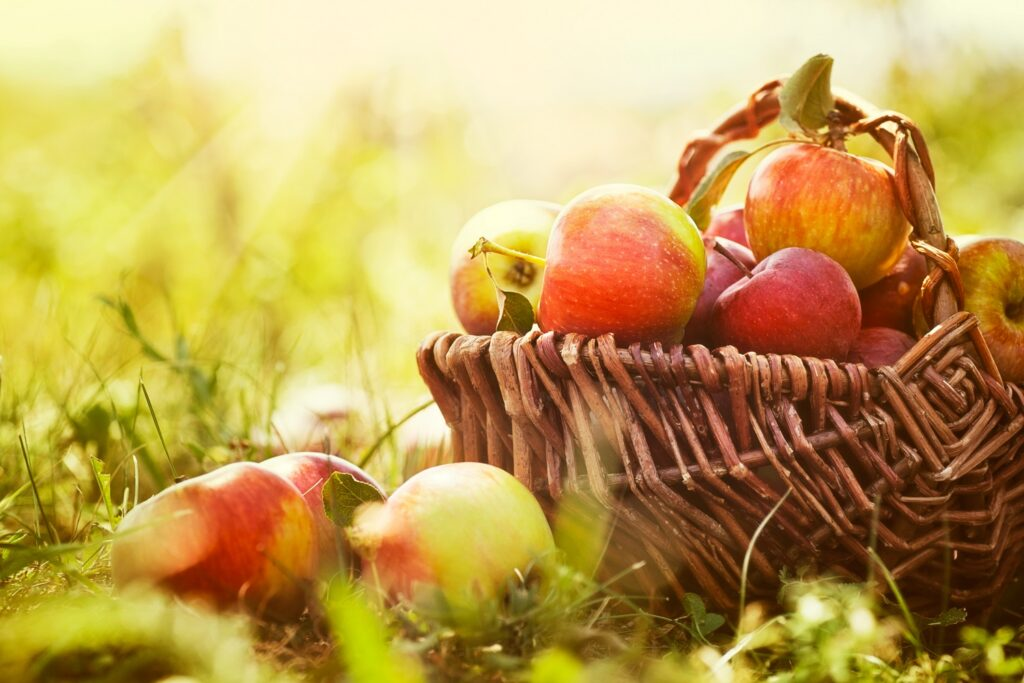Fruit compound may help to prevent dementia - new study