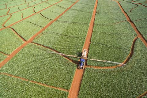 Fresh Del Monte Produce takes steps toward 2030 sustainability goals
