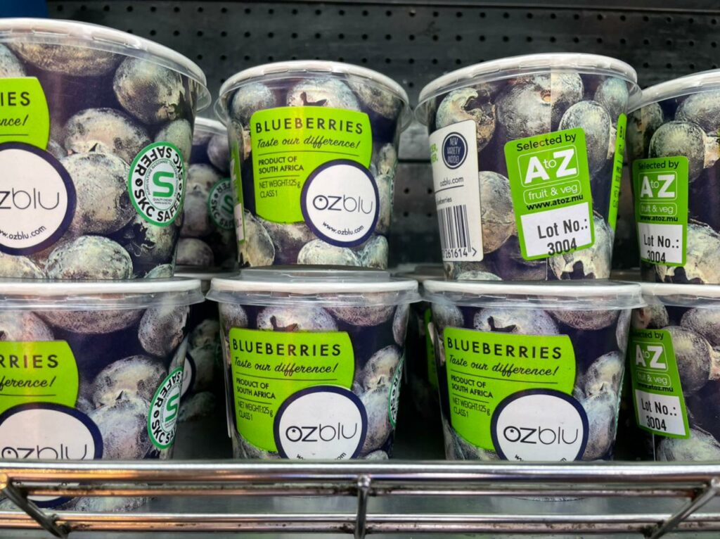 OZblu launches 'ground-breaking' recycled paper cups for blueberries