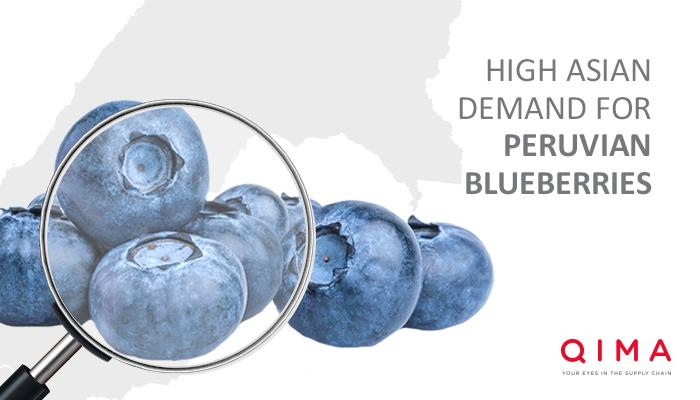 High Asian demand for Peruvian blueberries