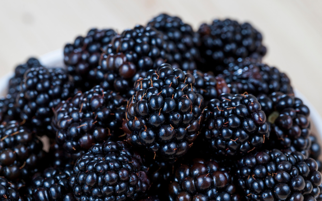 Agronometrics in Charts: Blackberry prices free fall in U.S. market