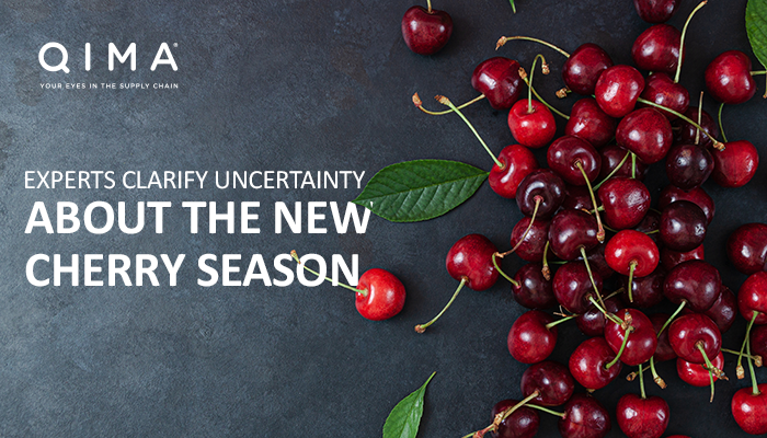 QIMA: Uncertainty among cherry exporters over new season in Chinese market