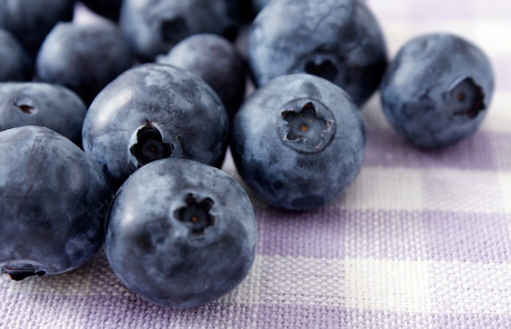 Fall Creek announces General Manager of Sekoya platform for premium blueberry varieties