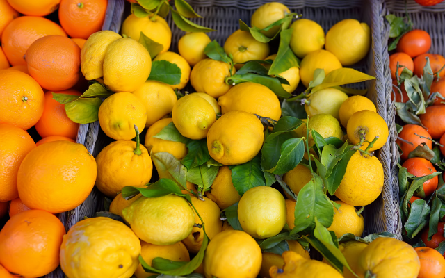 Chilean Citrus Committee partners with Shopkick to promote U.S. purchasing
