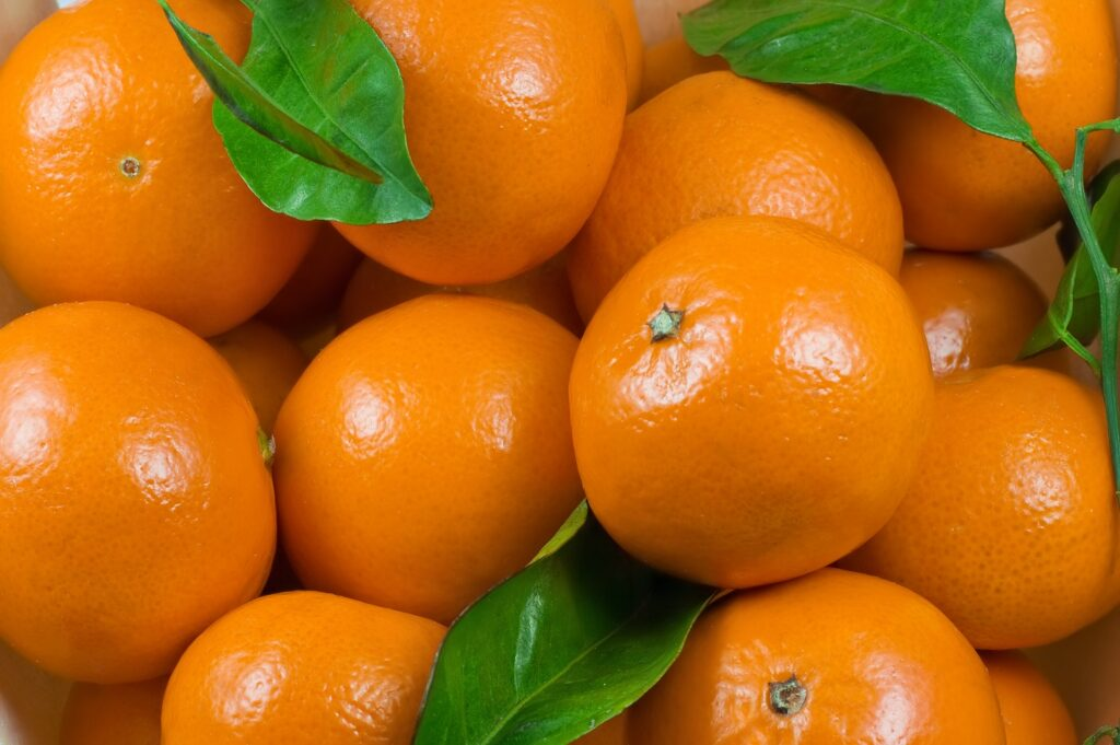 Moroccan fresh produce exports to Spain continue to rise