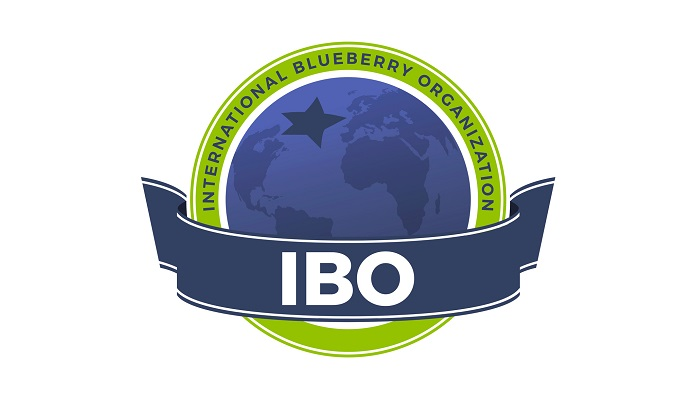 IBO's 2021 Global State of the Blueberry Industry Report now available for free