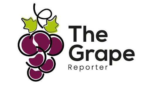 The Grape Reporter, the exclusive strategy and analysis platform for the global table grape industry